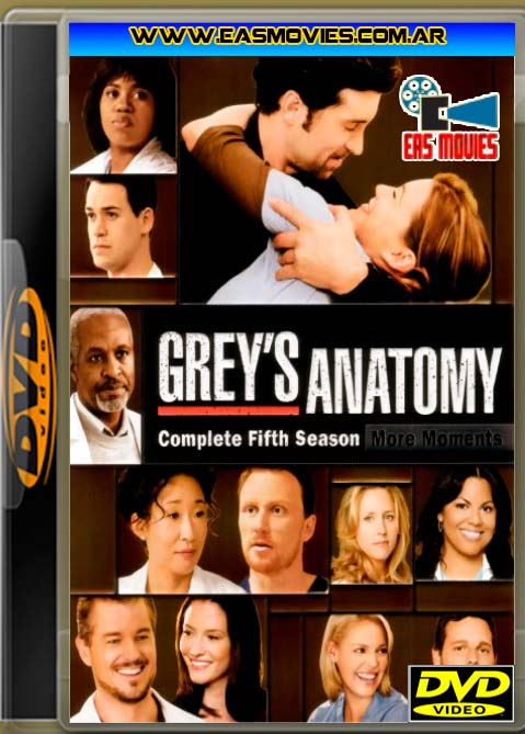 Perfect Greys Anatomy 5 Frieze - Anatomy And Physiology Biology ...
